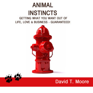 animal_instincts_cd_cover__25997