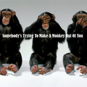 monkey_cover__14193