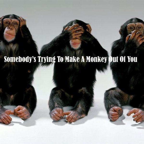 monkey_cover__14193