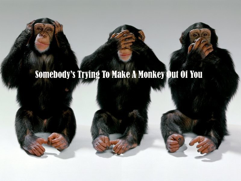 Someones Making a Monkey Out of You!