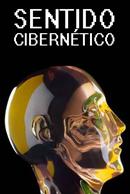 sentido_ciber_standard__41063